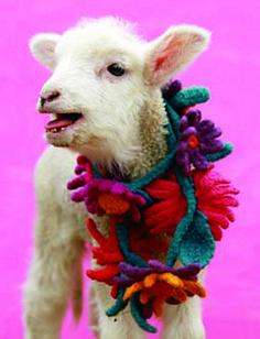 Ravelry: Olympia's Knit + Crochet Felted Flowers pattern by Kristin Nicholas