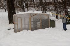 Winterizing a chicken coop