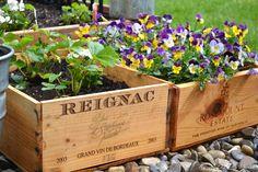 wine crate garden