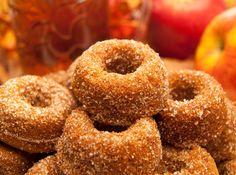 Mini Cinnamon Doughnuts by Janice Amee's Gluten-Free