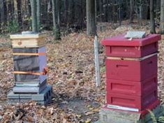 In the Beeyard: Final Winter Preparations - Over the years we have tried a few different methods of preparing the hives for winter.  This past winter we only lost 1 out of our 12 hives. The remaining 11 hives were so strong coming out of winter that we were able to create an additional 2 full hives, and 5 nucleus colonies.   Here is how we go about winterizing our beehives.