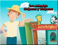 LA REPRODUCCIÓN DE LOS ANIMALES: Vivíparos y Ovíparos ~ Juegos gratis y Software Educativo