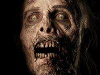 seasons, walking dead, walker, walk dead, twd, walkingdead, dead season, zombies, dead zombi