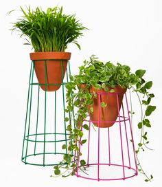 Jorge Diego Etienne collaborated with Savvy Studio in the design of First Object, a trio of planters for Casa Bosques.