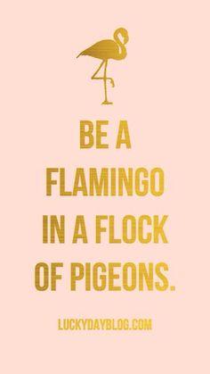 Be a flamingo.