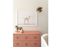 Baby Camel - The Animal Print Shop by Sharon Montrose