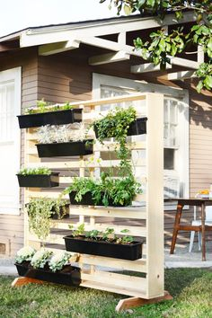 Vertical Living Wall