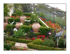 Plants for Landscaping any Garden
