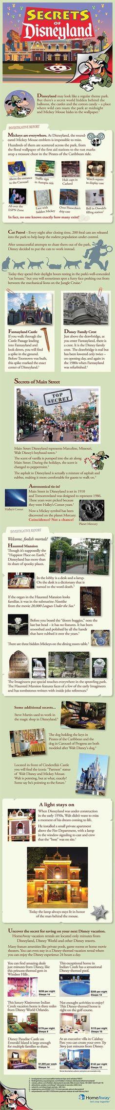 one day, secret infograph, disneyland trip, disney secrets, place, disneyland secrets, feral cats, thing, kid