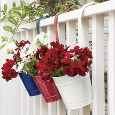 decor, white picket fences, juli 4th, buckets, red white blue, planter bucket, blue flower, porch railings, garden