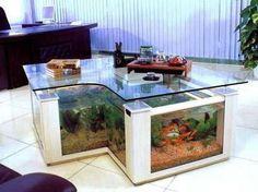 Creative amazing and weird aquarium fish tank