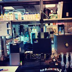 Lab work photo by IIT student Jefferson West