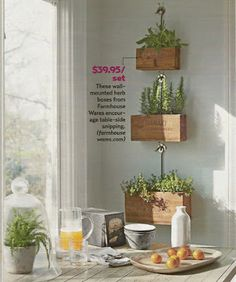 love these wall-mounted herb boxes from farmhousewares.com $39.95 for the set