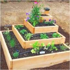 Vegetable garden :-)