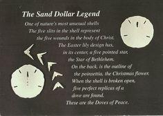 Sand dollar legend poem legends and poems pinterest