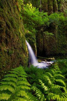 Columbia River Gorge | Oregon