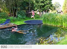 A pool disguised as a pond. I want this. I also like the trampoline idea