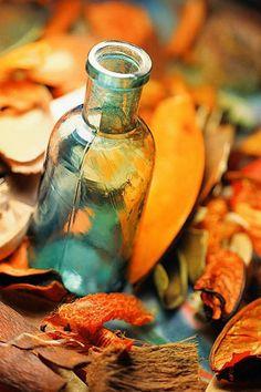 aqua and burnt orange