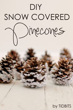 DIY Snow Covered Pin