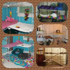 Another bunny condo collage from ideas I found on line. These all have similar dimensions, but it's the inside what varies. Think of what would make your bunny happier, (jumps? Ramps?) and make his dream condo!