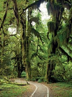 Seattle Magazine | Northwest Travel/Camping and Hiking | Best Northwest Hikes and Walks