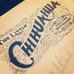 Lettering: The Little Chihuahua
