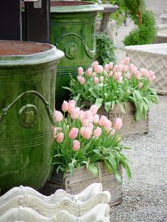 green, pale pink, planter, wooden boxes, tulips, flowers, wooden crates, garden, pink tulip