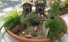 beachy mini garden