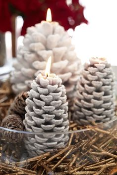 White wax dipped pine cones~