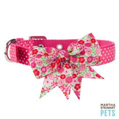 Martha Stewart Pets® Floral Dog Collar | Collars | PetSmart