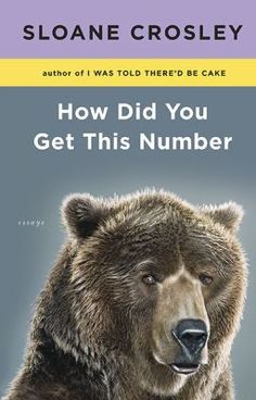 How Did You Get This Number by Sloane Crosley #reading