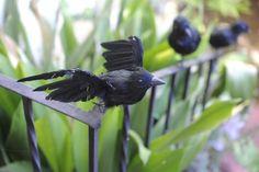 Halloween crows - cupcakesandcashmere.com