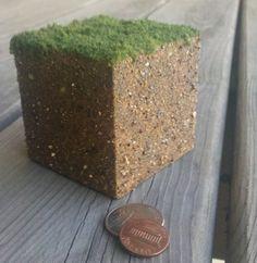 Real life Minecraft dirt block
