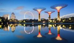 Futuristic Super-Trees To Soon Light Up Singapore's Marina Bay