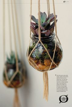 my little hanging plants have been features in the Born shoes second journal!!