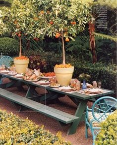 Gorgeous - little apple trees could be made to be tall, with veggies and flowers below going down the table with hopss vines