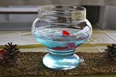 Fish bowl centerpieces ... jello & swedish fish (martha stewart recipe)