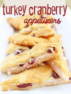 Turkey Cranberry Appetizers