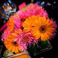 orange pink flowers