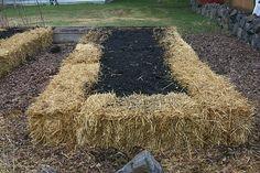 Hay or Straw Bale Garden
