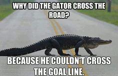 Go Noles!!! Boo Gators!!!