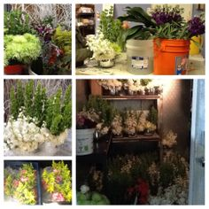 GARDEN FRESH: our floral design studio is hard at work creating stunning arrangements from nature's bounty!