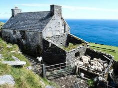 The low road passes old stone farmhouses and barns on Dursey Island