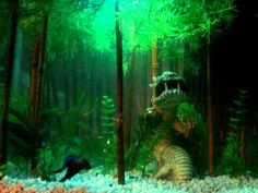 All things betta on pinterest betta fish tanks and bamboo for Water temperature for betta fish tank