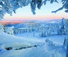 Lapland: walking in a winter wonderland