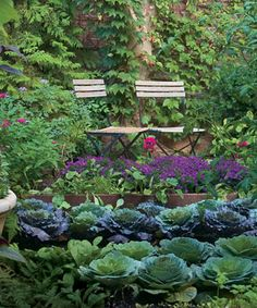 Who says a kitchen garden can't be beautiful? Turn edible plants into design elements in your garden with these strategies.