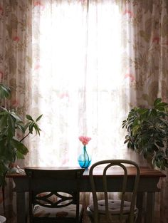 Lovely curtains, houseplants, and table and chairs.