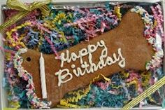 Happy Birthday Bone Yogurt Dog Treat !