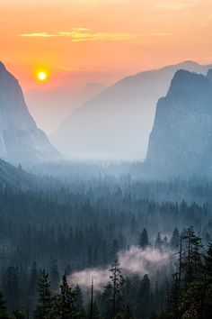 Morning Mist In The Valley, Yosemite National Park, USA
