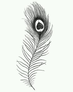 Peacock feather tattoo - small one for my foot?